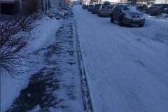 Шагольская-2а-ублрка-снега